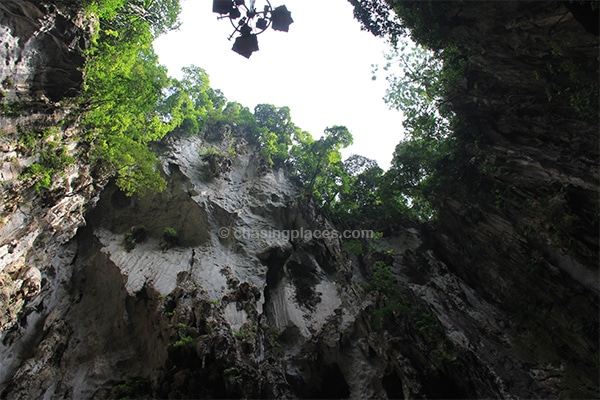 Looking directly up at the top of the Cathedral Cave