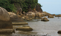 How to Get from Surathani to Koh Samui