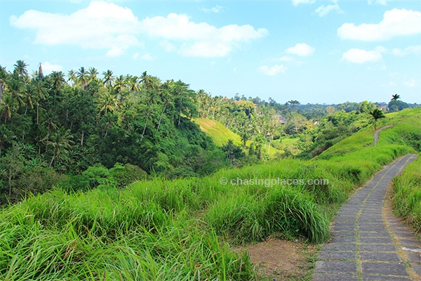 There are some beautiful walking paths through the undulating countryside near Ubud