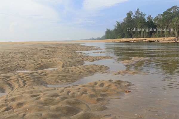 The mouth of the Cherating River at low tide