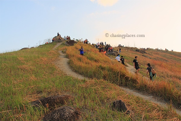 The trails split along the way up to the peak of Broga Hill