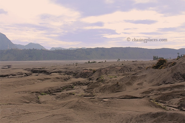 The landscape minutes away from Mount Bromo