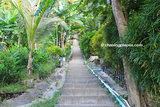 The initial set of stairs leading up to Phi Phi Viewpoint