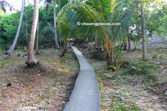 The walk up to Phi Phi Viewpoint gets less steep as you continue to walk up