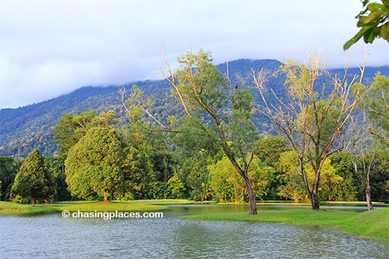 Taiping's stunning Lake Gardens with Bukit Larut in the background