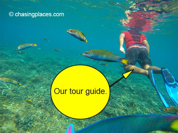 Our tour guide was full of enthusiasm during our snorkeling sessions