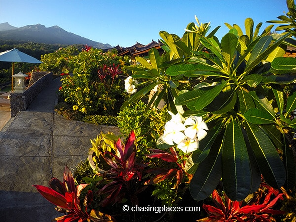 Rinjani Lodge has beautiful flowers surrounding their property
